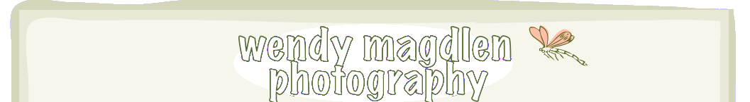 Wendy Magdlen Photography logo